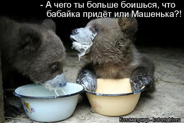 1376215120_kotomatrix_16_1