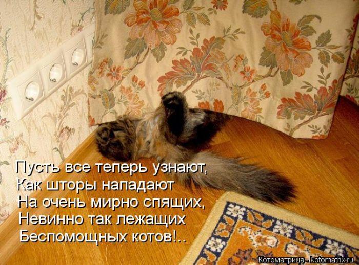1376215131_kotomatrix_01_1