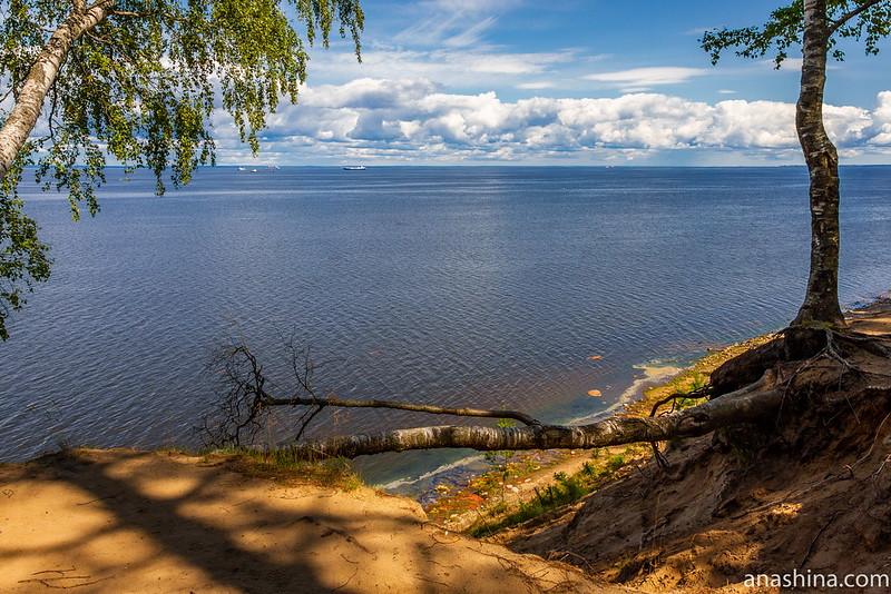 Панорама Финского залива с обрыва