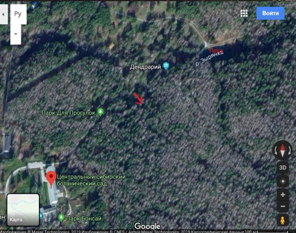 Карта Ботсада