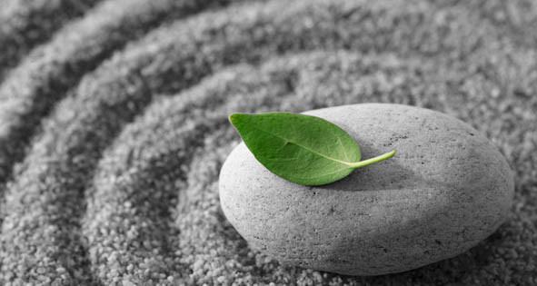 Meditation-leaf1