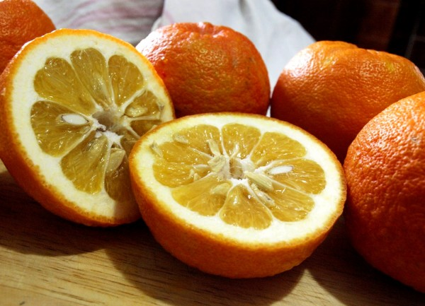 Seville oranges