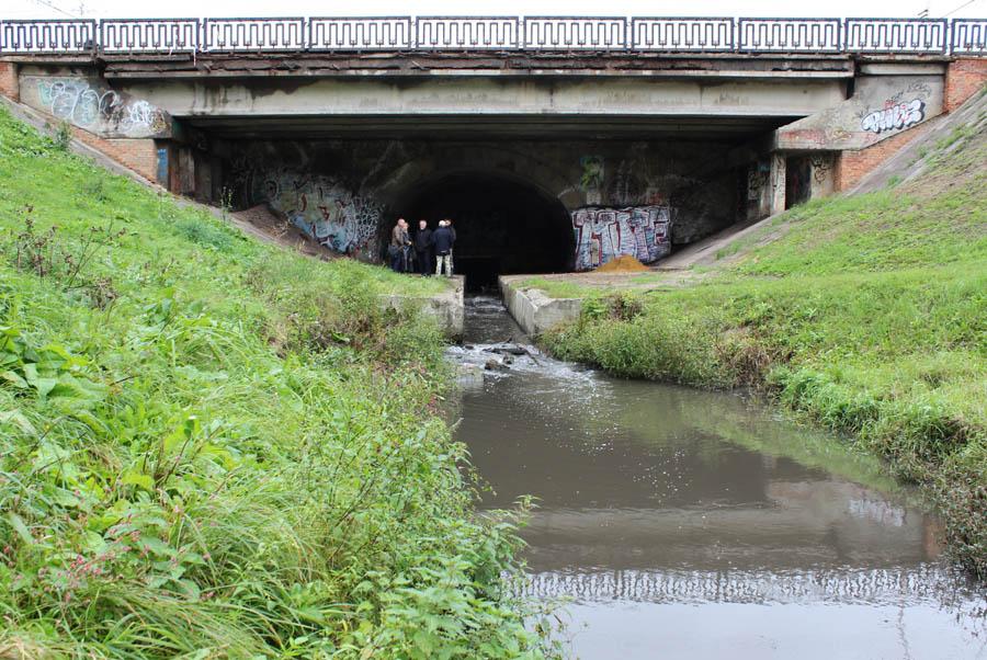 1. Державинский мост