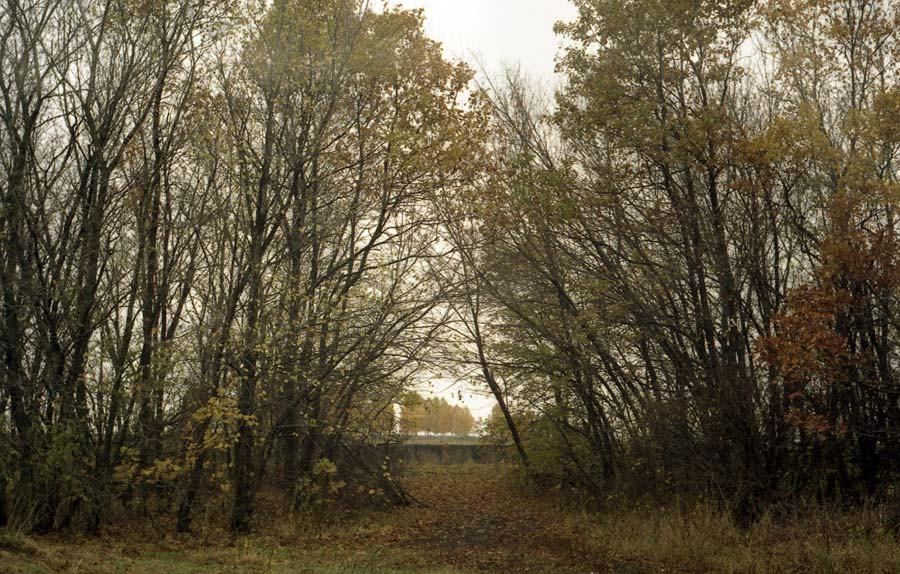 В парке Мары. Фото 2004 г.