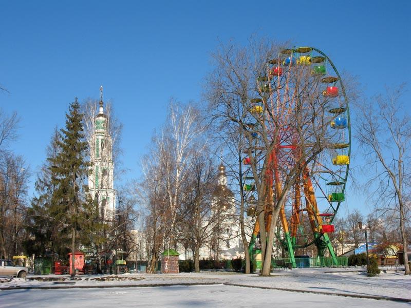В городском саду. Тамбов. Фото 29 декабря 2012 г.