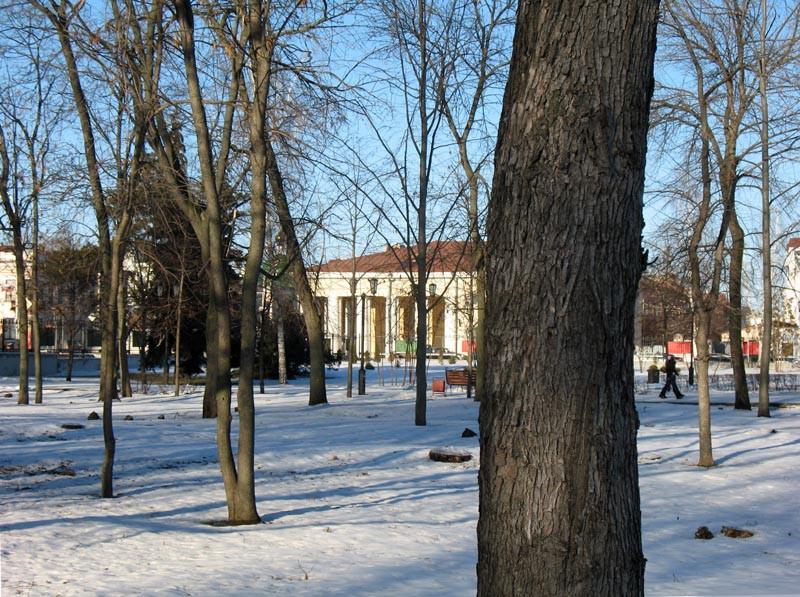Городской сад. Вид на здание ГУМа (гостиный двор). Тамбов. Фото 29 декабря 2012 г.