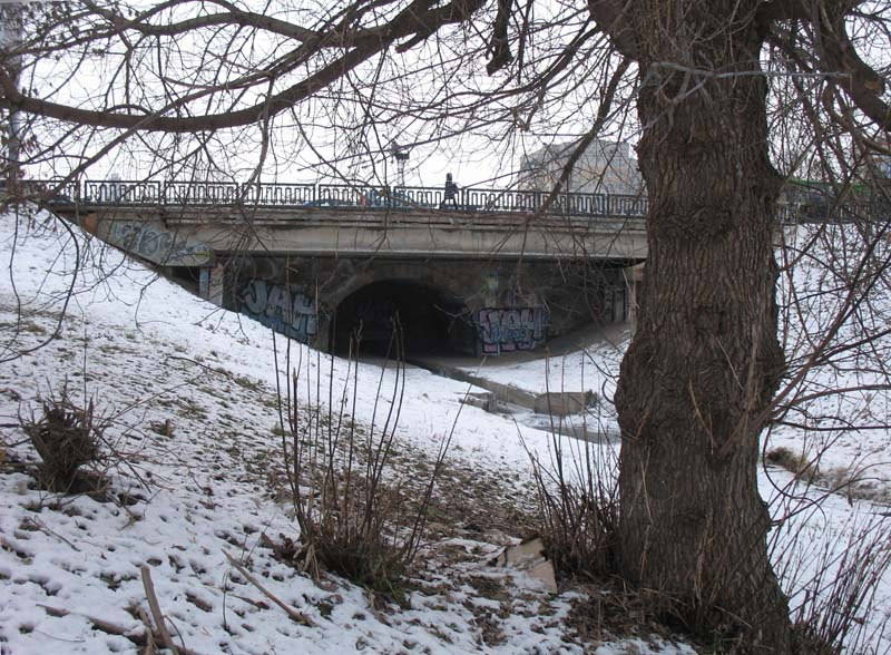 Державинский мост в Тамбове. Фото 25 декабря 2012 г.
