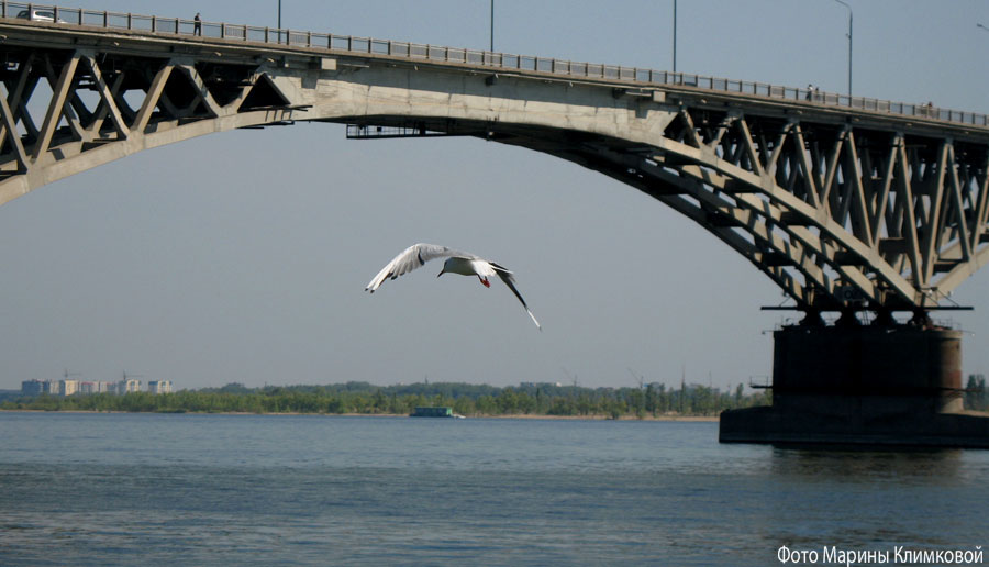 Волга. Фото 2006 года