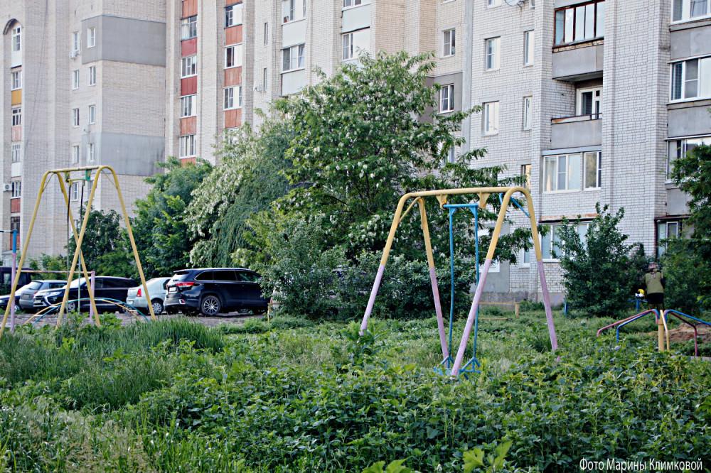 На Студенце. Тамбов. Фото 4 июня 2020 года