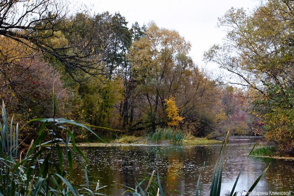 Река Цна. Тамбов
