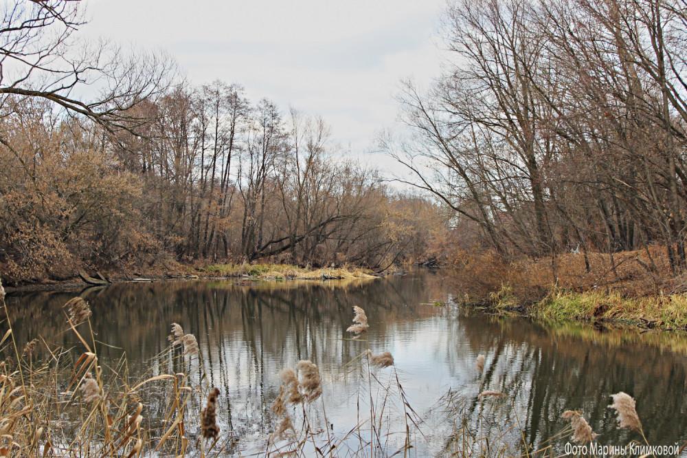 Ноябрь на реке Цне
