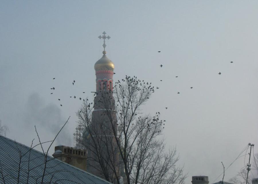 Колокольня Вознесенского монастыря. Тамбов. Фото 27 января 2013 г.