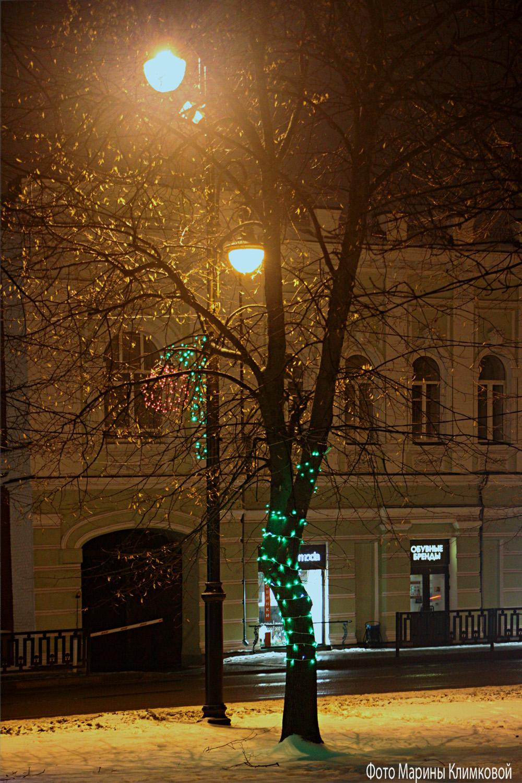 Тамбов. Улица К. Маркса. Фото 7 января 2021 года