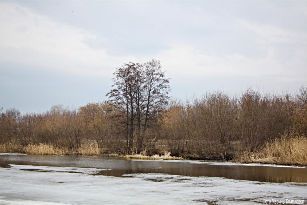 Река Цна. Тамбов. Фото 1 апреля 2021 года
