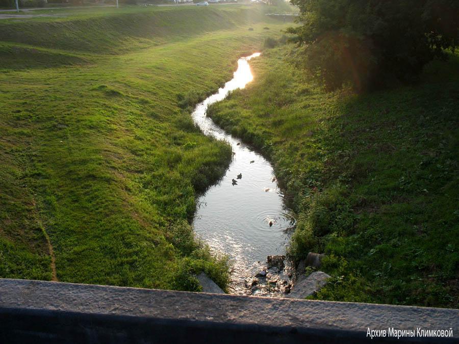 Тамбов. Вид реки Студенец с Державинского моста. Фото 7 августа 2013 года