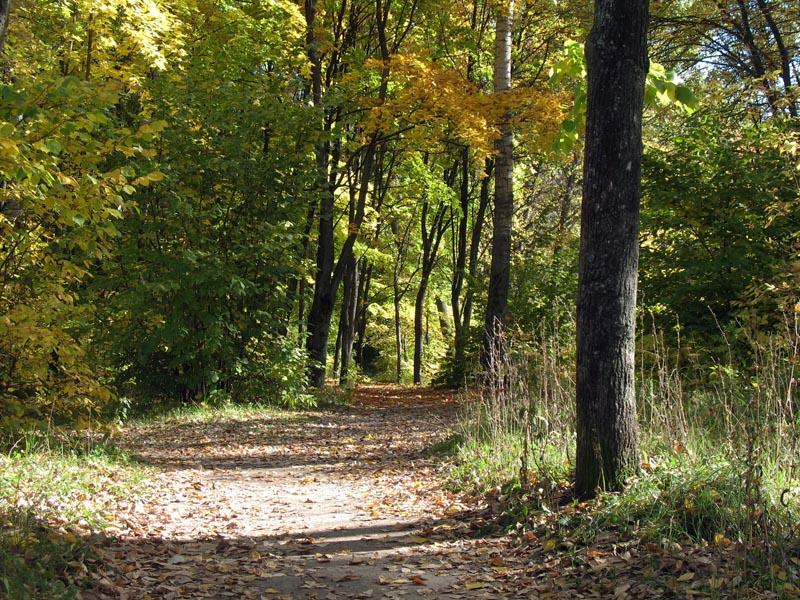 Аллея парка Дружбы. Фото 2006 г.