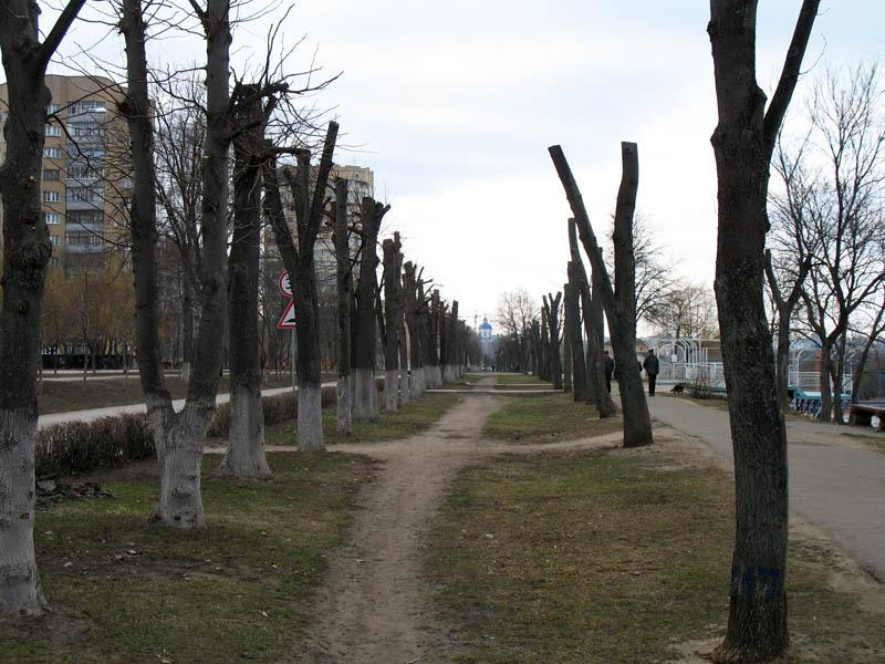 Набережная. Тамбов. Фото 2010 г.
