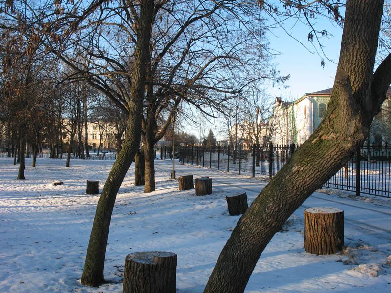 Городской сад. Тамбов. Фото 29 декабря 2012 г.