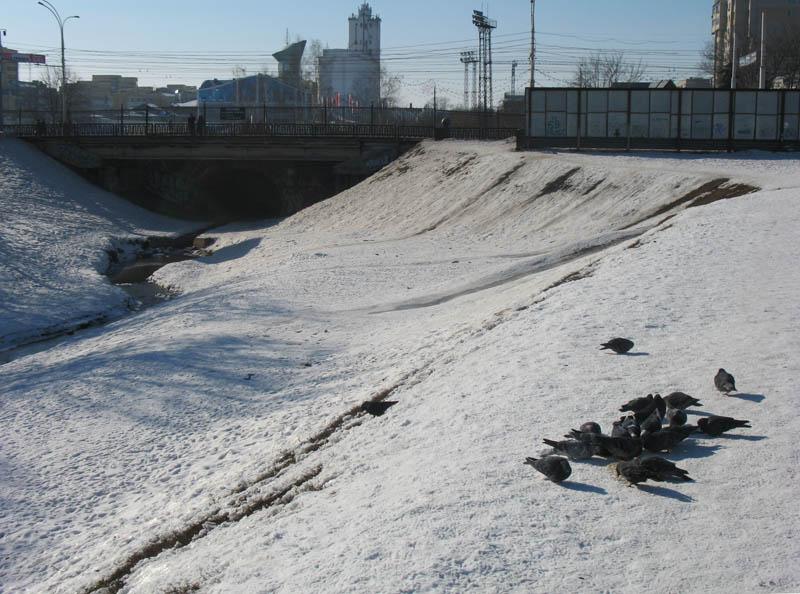 Державинский мост. Фото 24 февраля 2013 г.