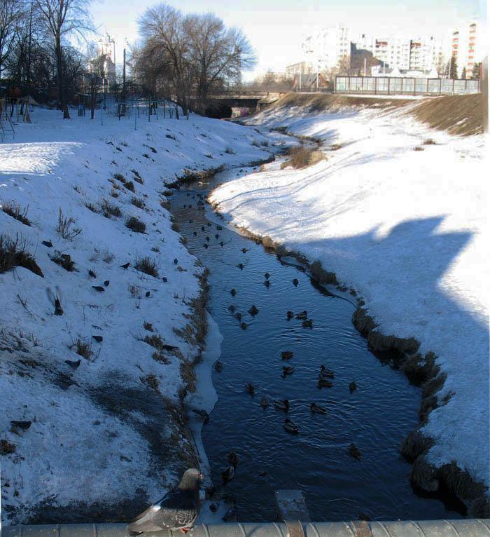 Студенец. Тамбов. Фото 8 марта 2013 г.
