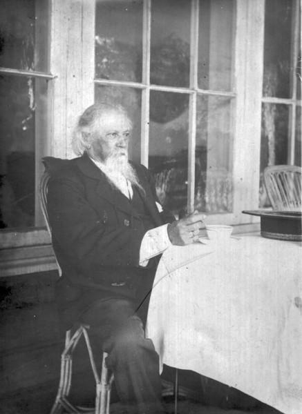 А.М. Жемчужников в усадьбе Боратынских Ильиновка. Фото 1890-х гг.