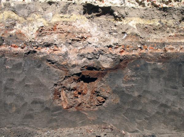 Фрагмент конструкции епископского собора со следами половых досок