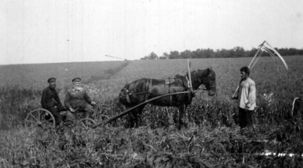 Ильиновка. Объезчики. 1907