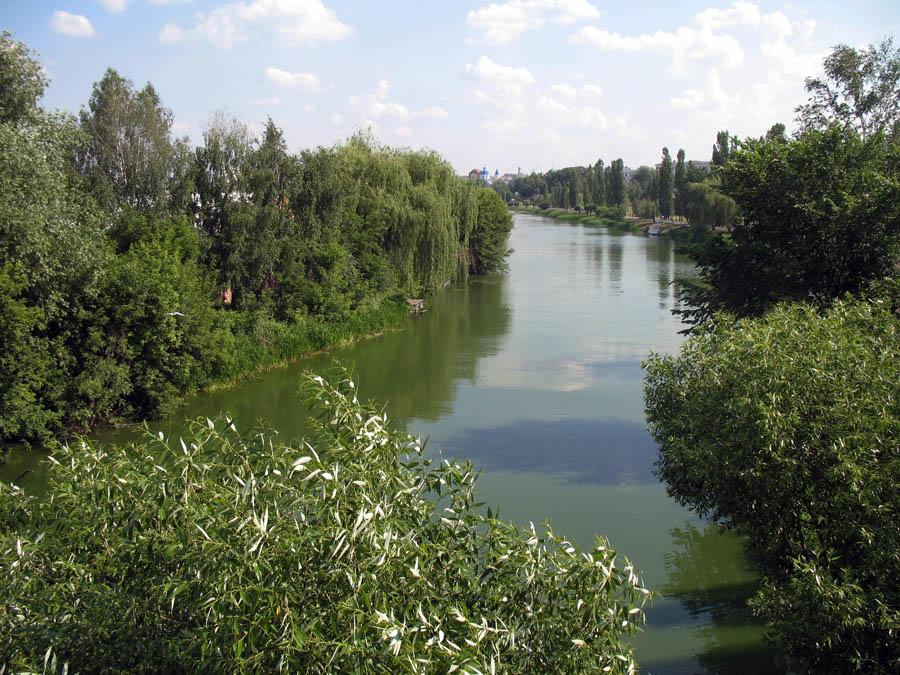 Река Цна у Тамбова. Фото 11 июня 2013 г.