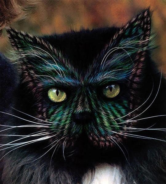 кошка раскраска восемь