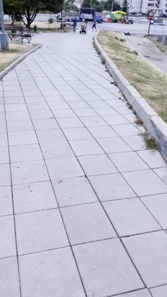 плитка1 (450x800)