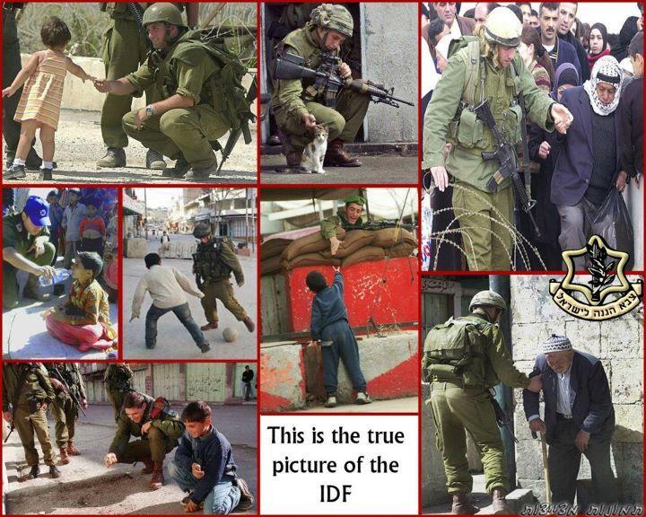 The true picture of IDF