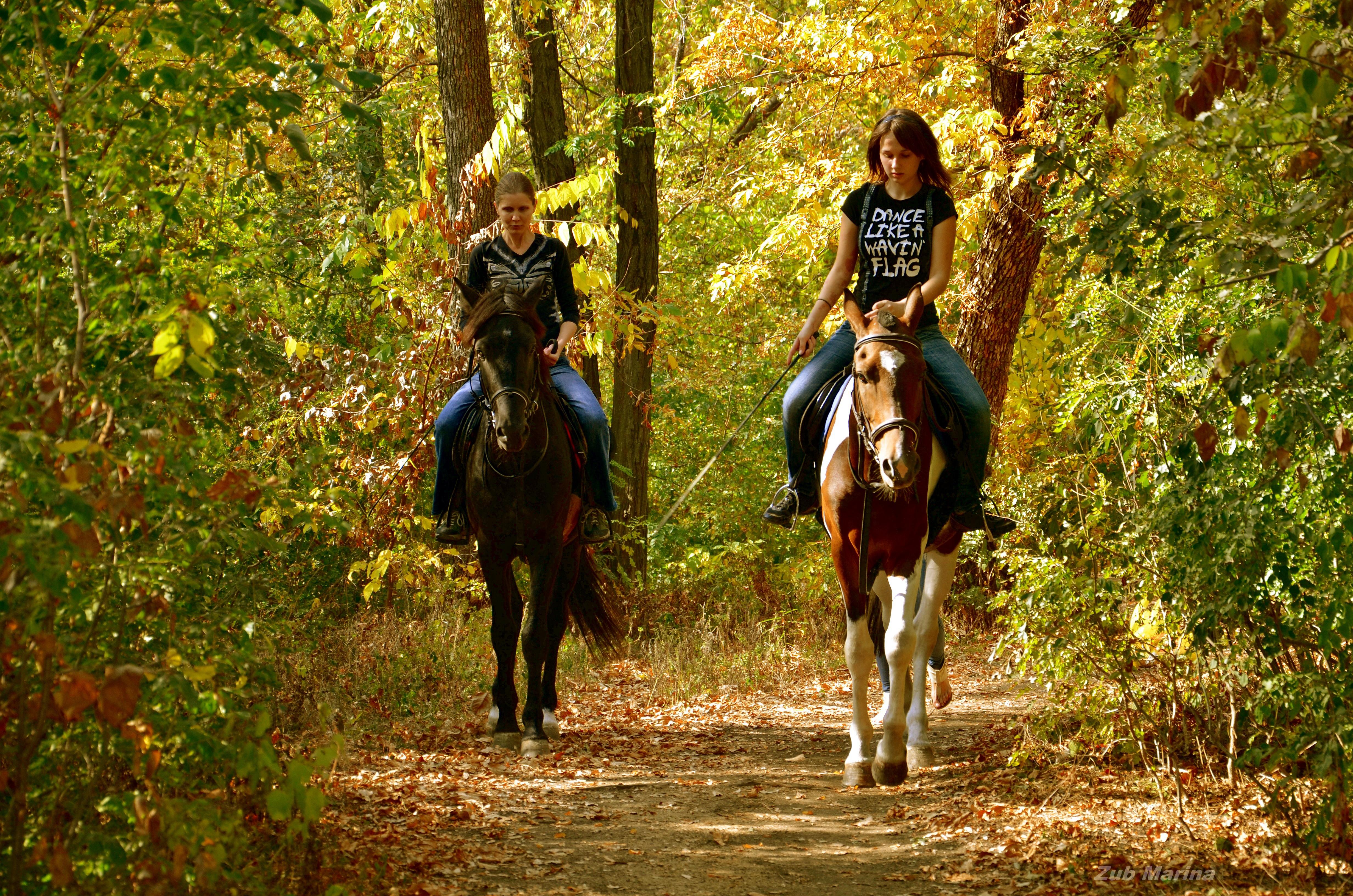 картинки прогулка на лошади с дамой