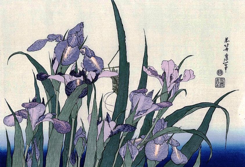 katsushika-hokusai-irises-and-grasshopper-1830-1359045705_org