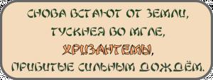 16813_600