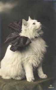 417374_photoshopia_ru_342_Vintage_cats_41.jpg