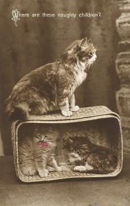 460014_photoshopia_ru_342_Vintage_cats_44.jpg