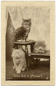 656832_photoshopia_ru_342_Vintage_cats_40.jpg