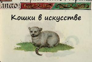 cat016