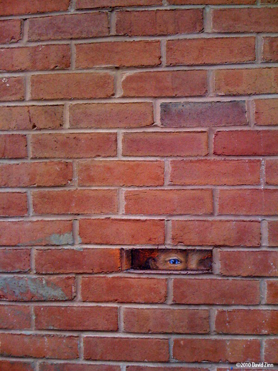 missing brick web