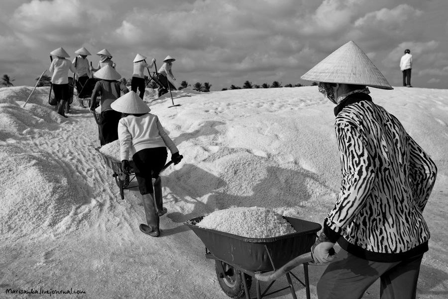Как добывается соль во Вьетнаме