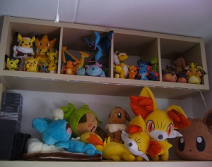 Pokémon_Collection2.jpg