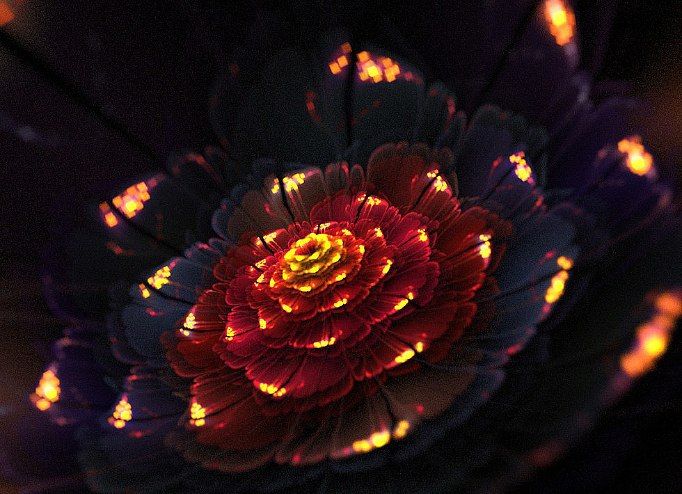 Картинка волшебный цветок красный