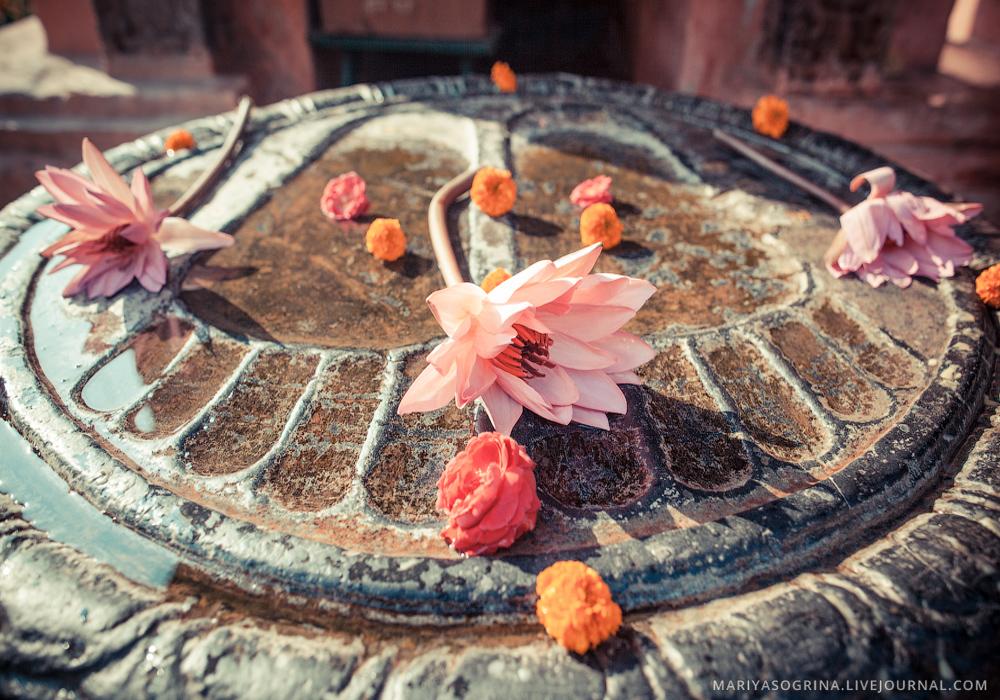 Mariya-Sogrina-Buddha-Feet-Bodhgaya