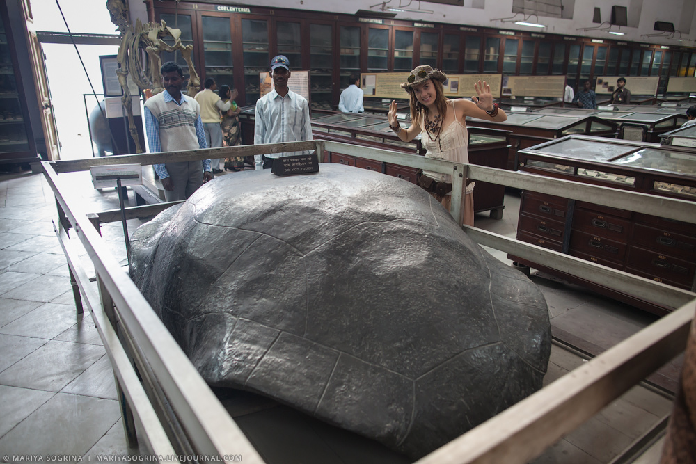 Mariya Sogrina Kolkata Museum-6