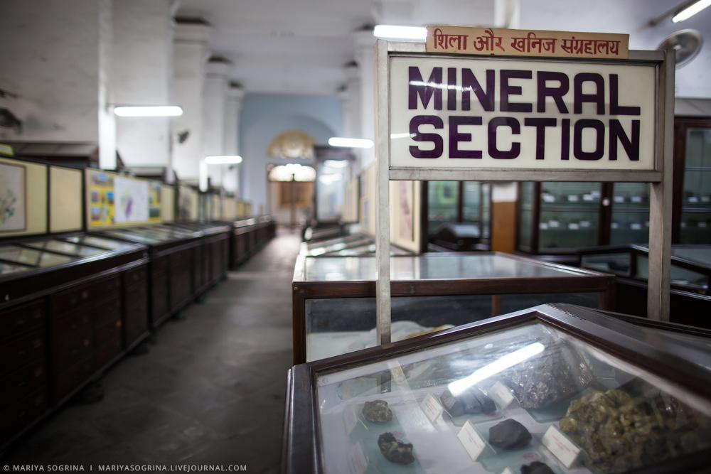 Mariya Sogrina Kolkata Museum-11