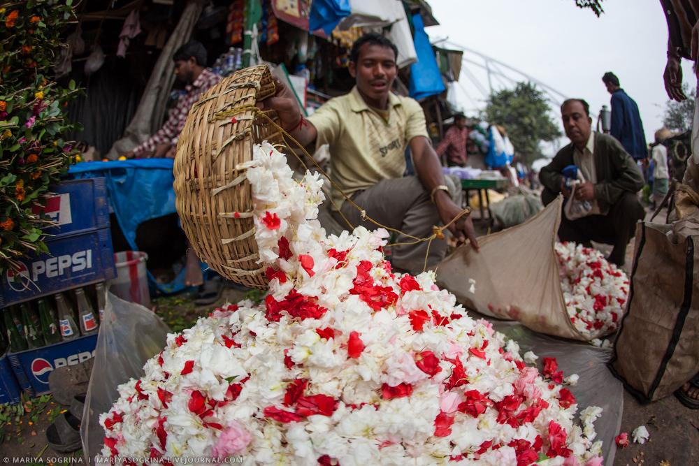 Mariya Sogrina Calcutta Flower Market-5