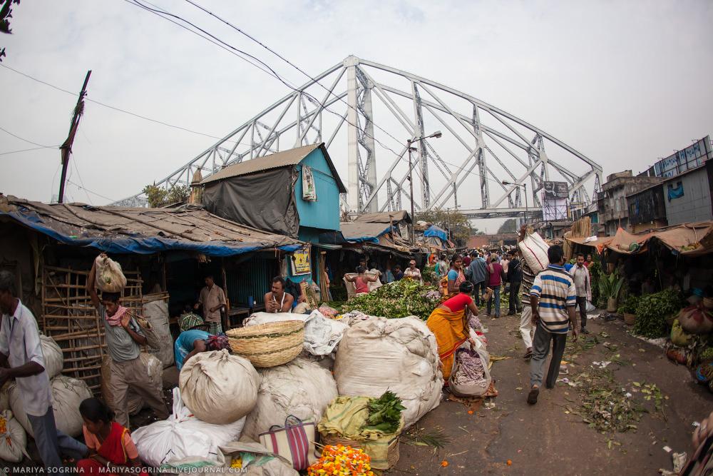 Mariya Sogrina Calcutta Flower Market-6