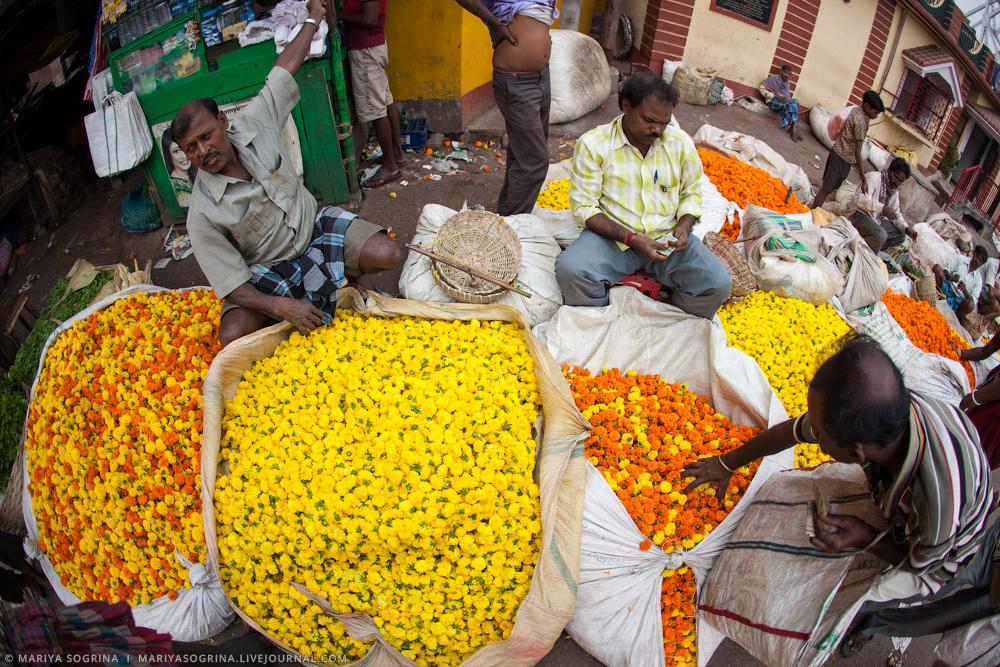Mariya Sogrina Calcutta Flower Market-7