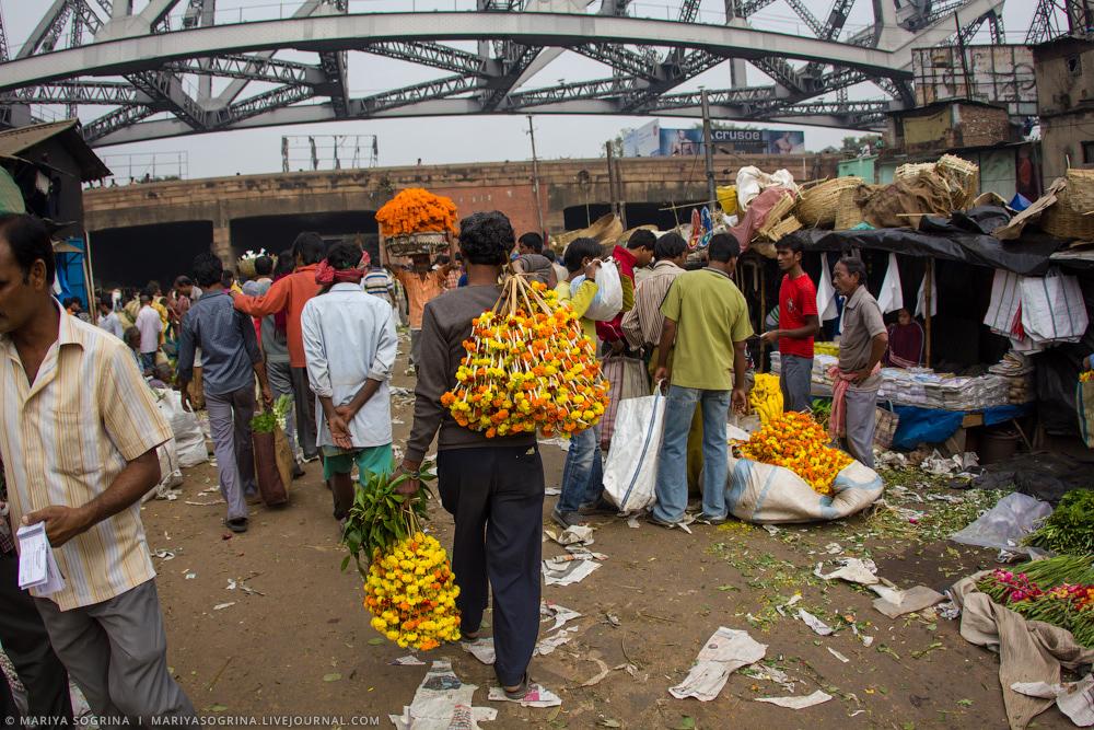 Mariya Sogrina Calcutta Flower Market-8