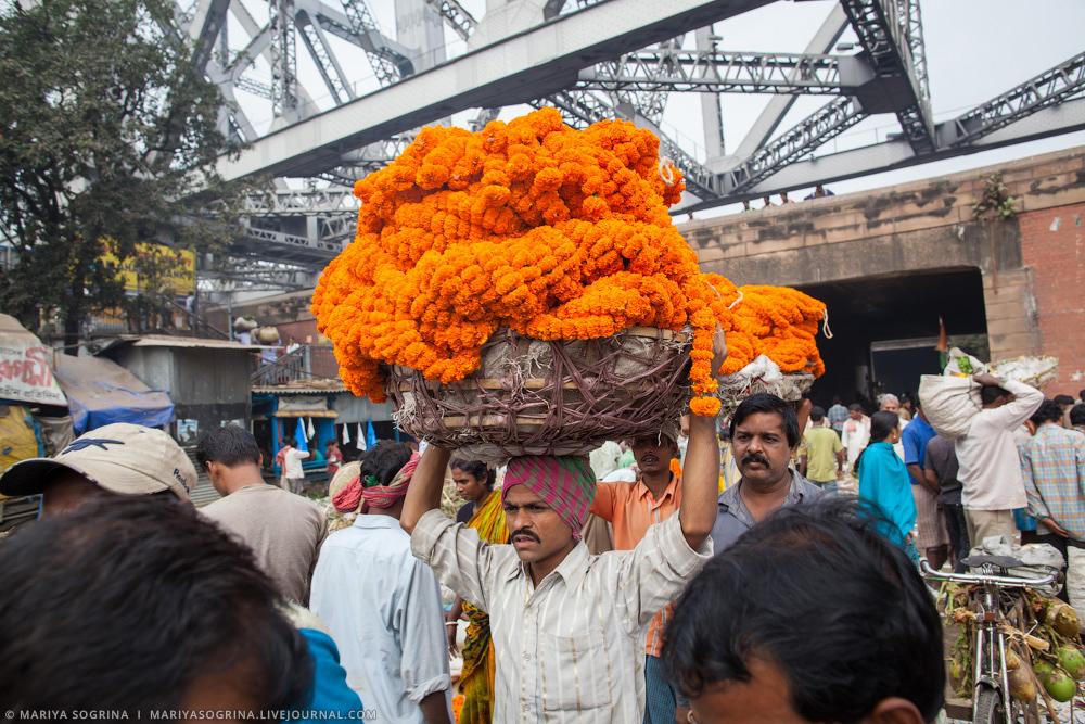 Mariya Sogrina Calcutta Flower Market-9